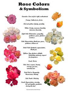 meaning of different color roses color meanings gather ye buds