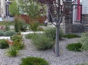 Do It Yourself Landscaping Ideas Front Yard - low maintenance rock landscape ideas bomets
