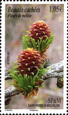 Gb Trees The Chestnut 1974 2nd Isuue trees 2nd issue 10p st 1974 chestnut