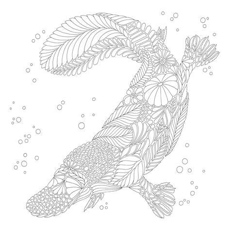 libro millie marottas curious creatures millie marotta s curious creatures 9781849943659 amazon com books desenhos para colorir