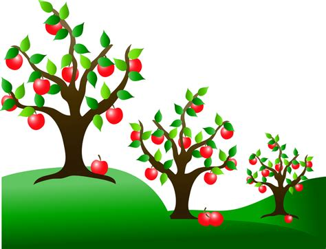 apple tree clipart apple farm clipart