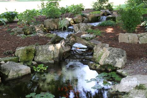 aquascape ponds pictures for aquascape designs in saint charles il 60174
