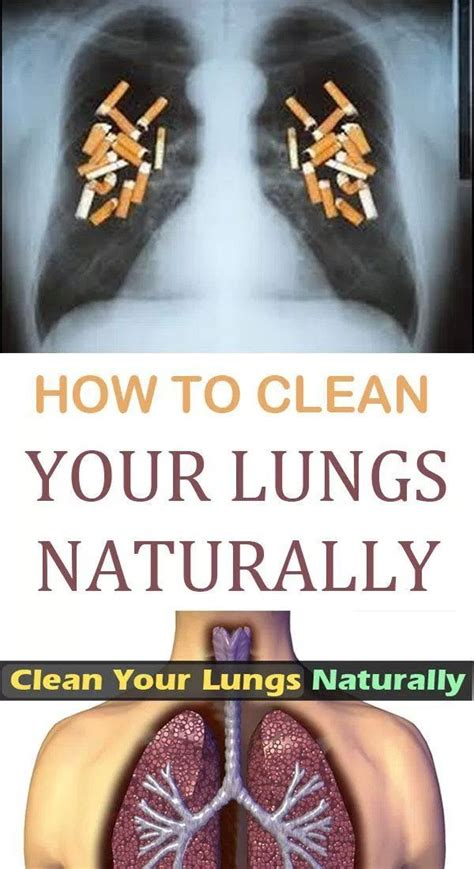 How To Detox Your Lungs Naturally by 2356 Best Health Care Images On Home