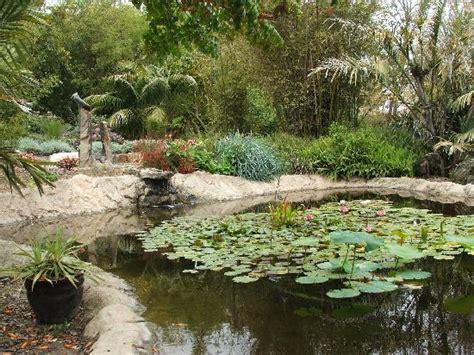 Botanical Garden Encinitas Innovative Encinitas Botanical Garden Pond At The Bamboo