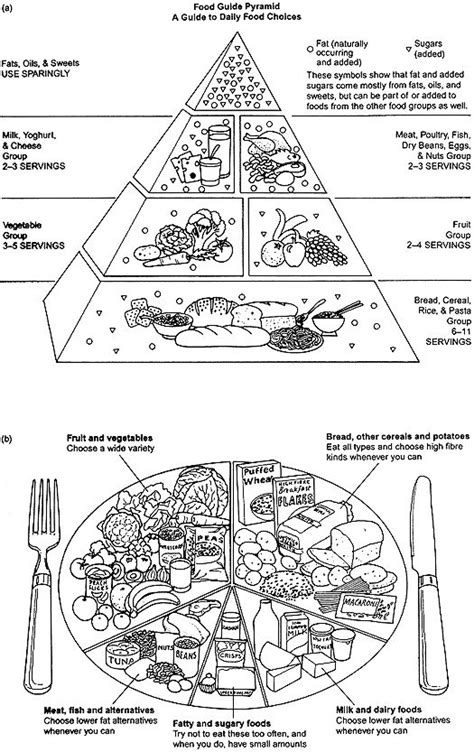 Food Guide Pyramid Worksheets Abitlikethis Guide Coloring Pages