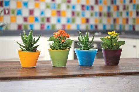 Handmade Flower Pot - handmade glass flower pots