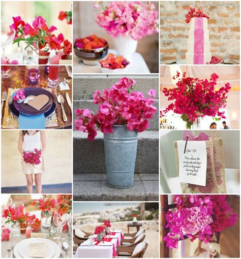 Tropical Flowers: Bougainvillea   Jacques wedding