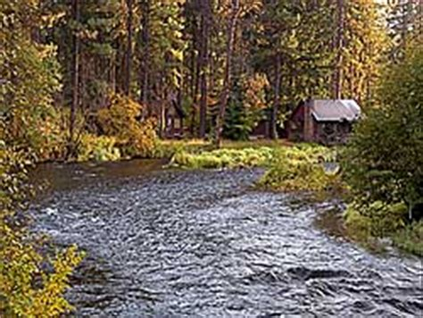 Cing Cabins Oregon by Metolius River
