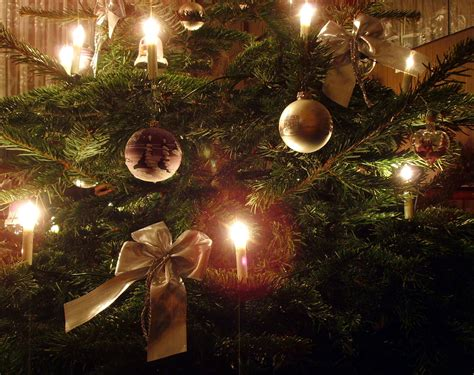 file candle on christmas tree 6 jpg wikimedia commons