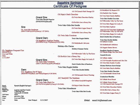 dog pedigree chart dog breeds picture