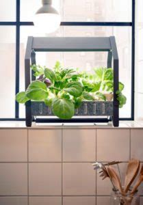 ikea indoor garden hydroponic gardens go mainstream at ikea homestead guru