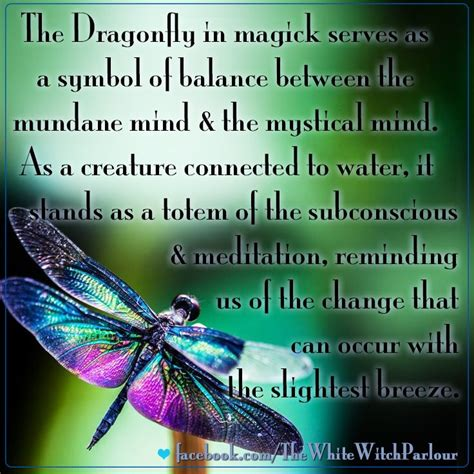 Spirits Of Loved Ones In House by 17 Best Images About Dragonfly On Sterling