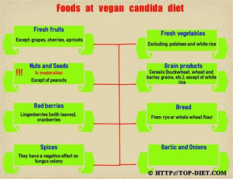 Candida Detox Food List by Vegan Candida Diet Food List And Cleanse Meal Plan