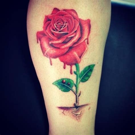 rose that grew from concrete tattoos pinterest roses
