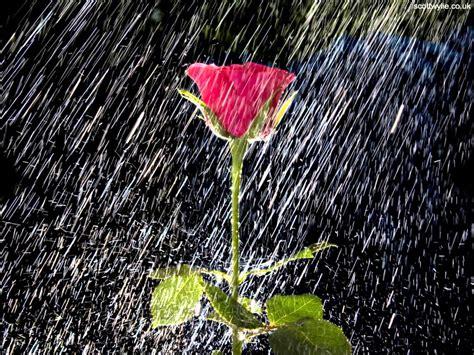 imagenes bellas lloviendo el gran combo de puerto rico gotas de lluvia youtube