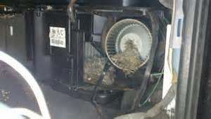 dodge dakota 4 7 2011 auto images and specification