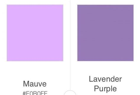 what does the color lavender how do mauve and lavender differ quora