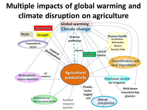 agriculture climate change and food security in the 21st century our daily bread books science