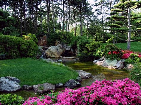 free photo landscape japanese garden free image on