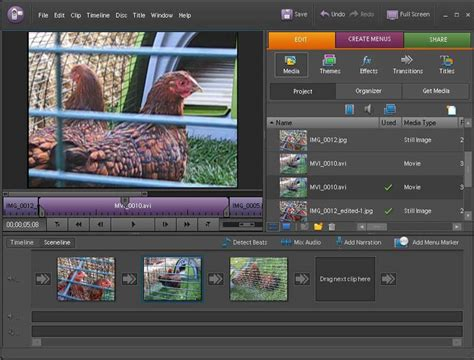 adobe premiere pro and elements conversion which file format to use for simple video