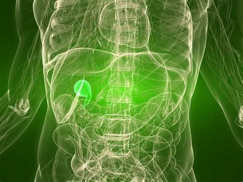 Gallbladder And Green Stool by In Abdomen Between Rib Cage Doctor Answers
