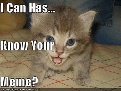 I Can Has Cheezburger Meme - quot cheezburger quot network acquires quot know your meme quot for 7