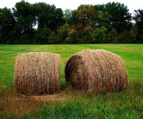 bails hay farm free stock photos in jpeg jpg 2827x2377