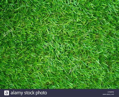 Grass Top by Artificial Grass Field Top View Texture Stock Photo