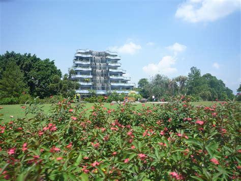 Bibit Buah Di Mekarsari wisata bogor taman wisata mekarsari