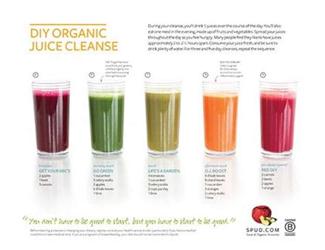 How To Make Detox Juice Without A Juicer by Diy Organic Juice Cleanse Recipes 5 Juices A Day You Can