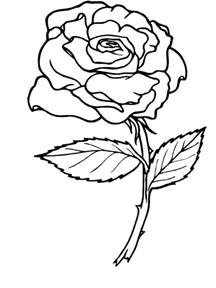 roses coloring pictures coloring pages coloring ville