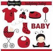 Ladybug Baby Cartoon Images Cliparts