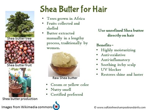Shea Butter Benefits shea butter benefits search engine at search