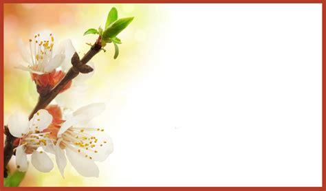wedding invitation card background design wedding invitation background designs nationtrendz com