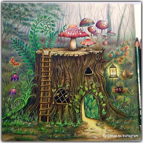 enchanted forest colored image result for johanna basford enchanted forest pages