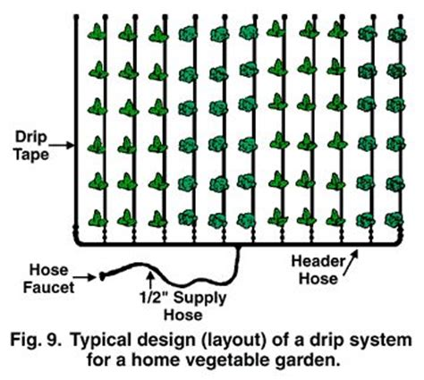 typical layout of drip irrigation system 69 best images about система полива irrigation system on