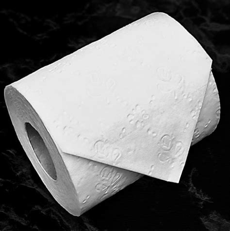 Toilet Paper Folding Designs - whimsical toilet paper origami that makes pooping more