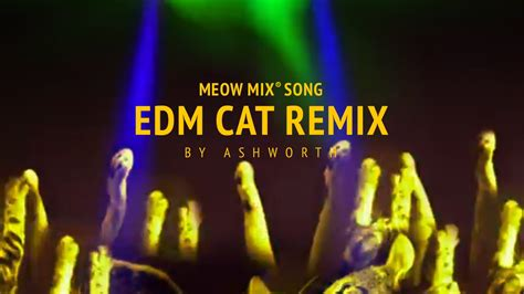 song mix meow mix song edm cat remix by ashworth
