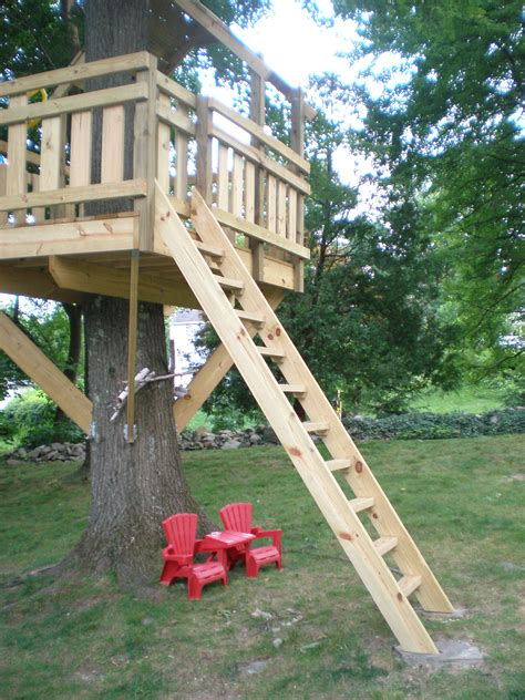 Simple Backyard Fort Plans by Tree Fort Ladder Gate Roof Finale Custom