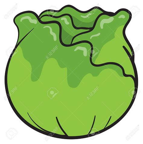 clipart animation cabbage clipart animated pencil and in color cabbage