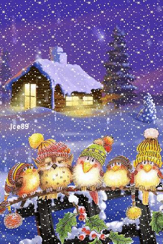 animated  christmas birds cell phone wallpaper category pets animals