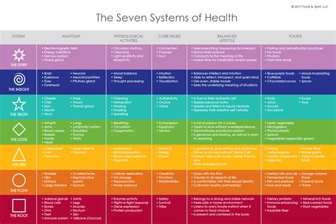 Deanna Minich Whole Detox by 7 Systems Of Spectrum Health Whole Detox By Dr