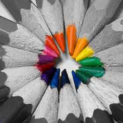 color splash photography black and white flowers with color bouquet idea