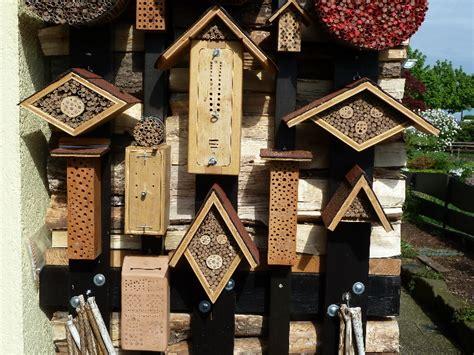 tipps wildbienenschreiner