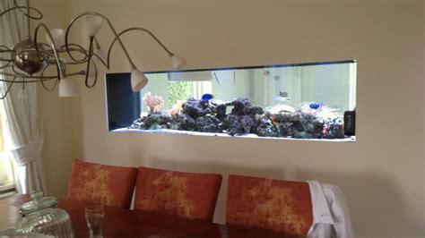 design zeeaquarium rifwachter aquaria maatwerk