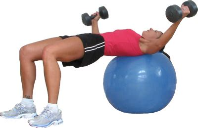 chest fly bench the bench press is a useless measure of your strength pt1 jamieatlas com