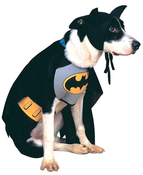 costumes for large dogs batman costume costume craze