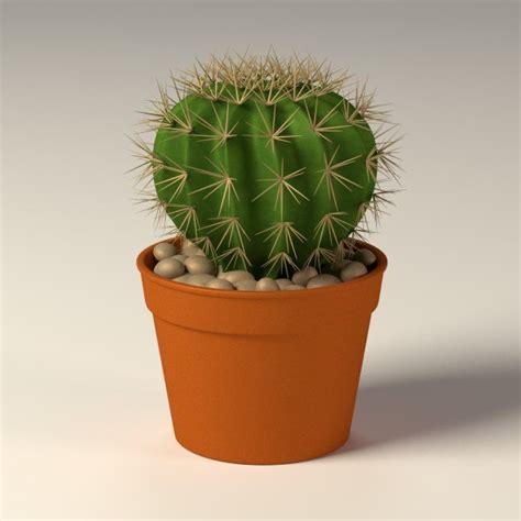 Cactus Garden Pot by 3d Model Cactus Pot