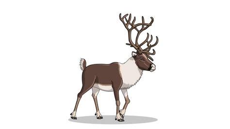 animated reindeer santa claus with galloping reindeer in loop stock footage