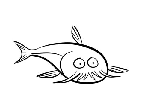 What Does Catfish Use To Find Find The Best Coloring Pages Resources Here Part 41